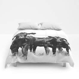 Cattle Country Photograph Comforters