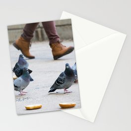 Philly Pigeons Enjoying Breakfast Stationery Cards