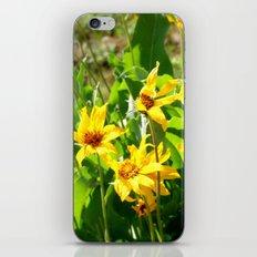 Yellow Wild Flowers iPhone & iPod Skin