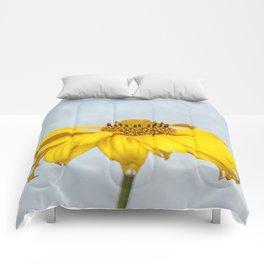 Rain Drops on Daisy Comforters