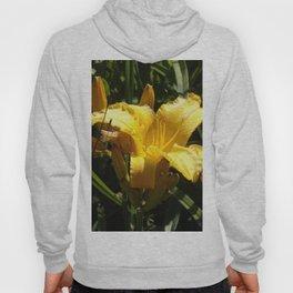 Beautiful Yellow Iris Open to the Sun Hoody