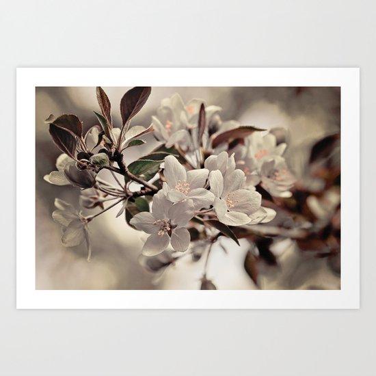 flowering Art Print