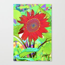 Sunflower Brillance Canvas Print