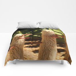 A Funny Sight Cacti Comforters
