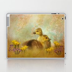 Under the Red Bud Tree Laptop & iPad Skin