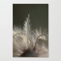 Feathery Frond Canvas Print