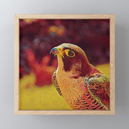 Popular Animals - Falcon Framed Mini Art Print