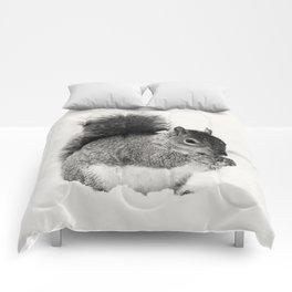 Squirrel Animal Photography Comforters