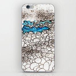 ...on the seashore iPhone Skin