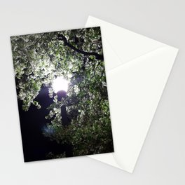 Nightly Blooms Stationery Cards