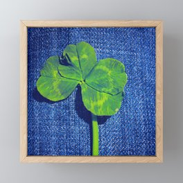 Lucky four leaf clover Framed Mini Art Print