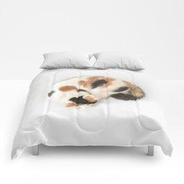 Sleeping Calico Cat Comforters