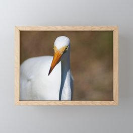The Enthusiast Framed Mini Art Print