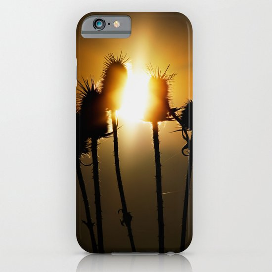 Catch the sun iPhone & iPod Case