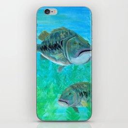 Bass Pairs iPhone Skin