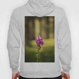 Wildflower Foxglove Hoody