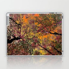 Colored forest Laptop & iPad Skin