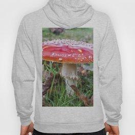 Fairy tale mushroom Hoody