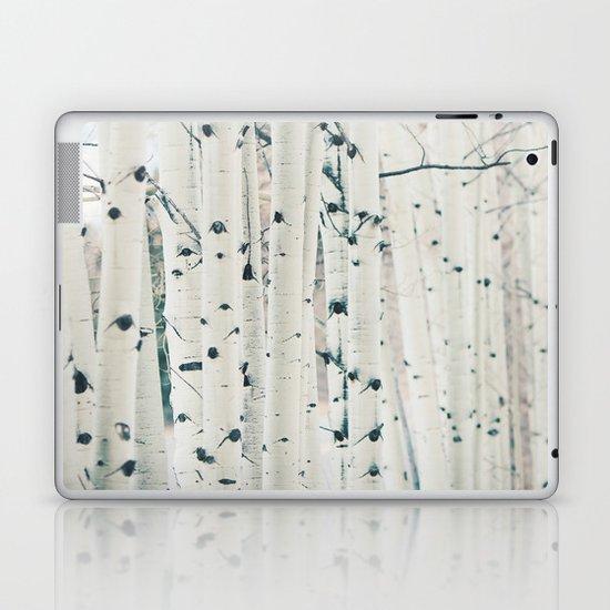 Aspen I Laptop & iPad Skin