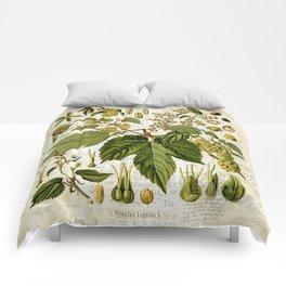 Common Hop Botanical Print on Vintage almanac collage Comforters