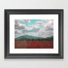 Red Ash Framed Art Print