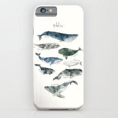 Whales Slim Case iPhone 6