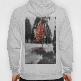 Blood Tree Hoody