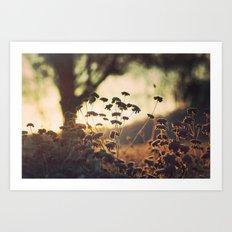 Days blur into one Art Print