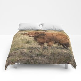 Scottish Highland ginger cow with it's tongue out Comforters