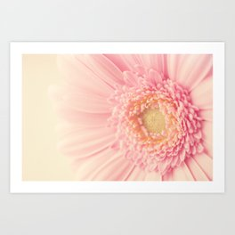 Pastel Pink Macro Art Print