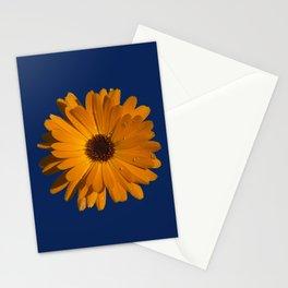 Orange power flower Stationery Cards
