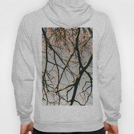 TREES BY EDUARD Hoody