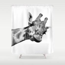 Black and white giraffe Shower Curtain