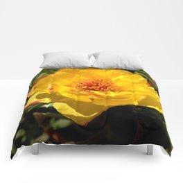 Flower GG Comforters