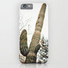 Desert Botanical Gardens Saguaro iPhone 6s Slim Case