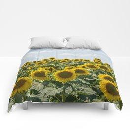 Sunflower Fields Comforters