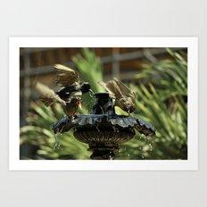 Rowdy Bird Bath Art Print