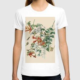 Vintage Hummingbird Illustration - Birds of America T-shirt
