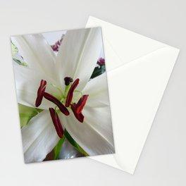 Flower. Stationery Cards