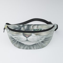 Pirate Maine Coon Tabby Cat Fanny Pack