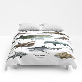 Sharks of the World Comforters