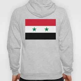 National flag of Syria Hoody