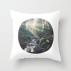 Sunbeam River Throw Pillow