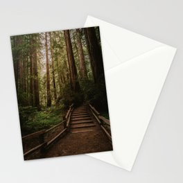 Muir Woods | California Redwoods Forest Nature Travel Photography Stationery Cards