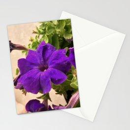 Dreams Midnight Petunias Stationery Cards