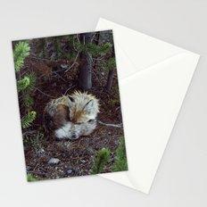 Sleeping Fox Stationery Cards