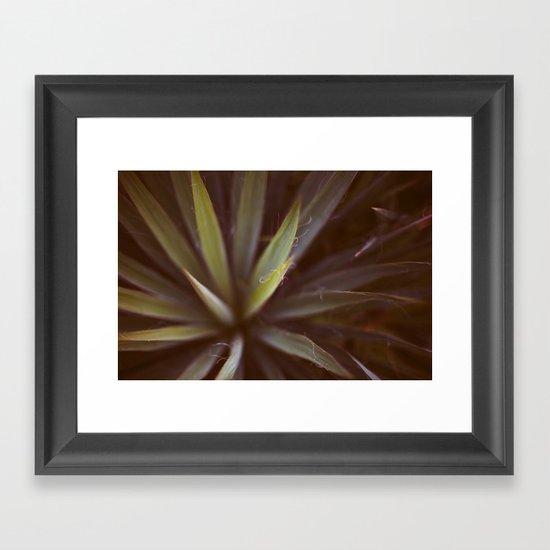 Yucca #1 Framed Art Print