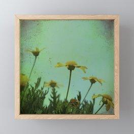 Fragile Flowers Framed Mini Art Print