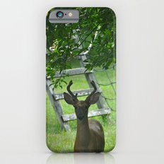 Observant Deer iPhone 6s Slim Case