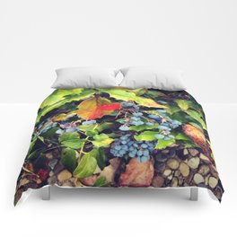 Fall 2014 Comforters